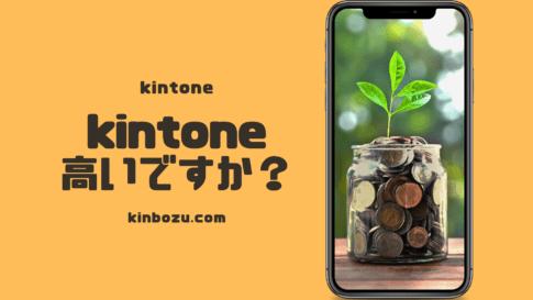 kintoneは高いサービスなのか?