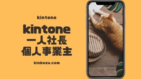 kintone1人で使いたい